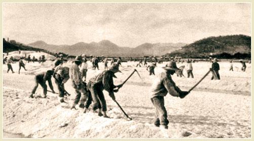 Salinas Ibiza 1930